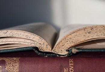 book-856151_1280