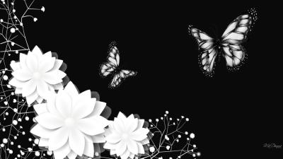 70 HD Black And White Wallpapers For Free Download (Resolution 1080p)