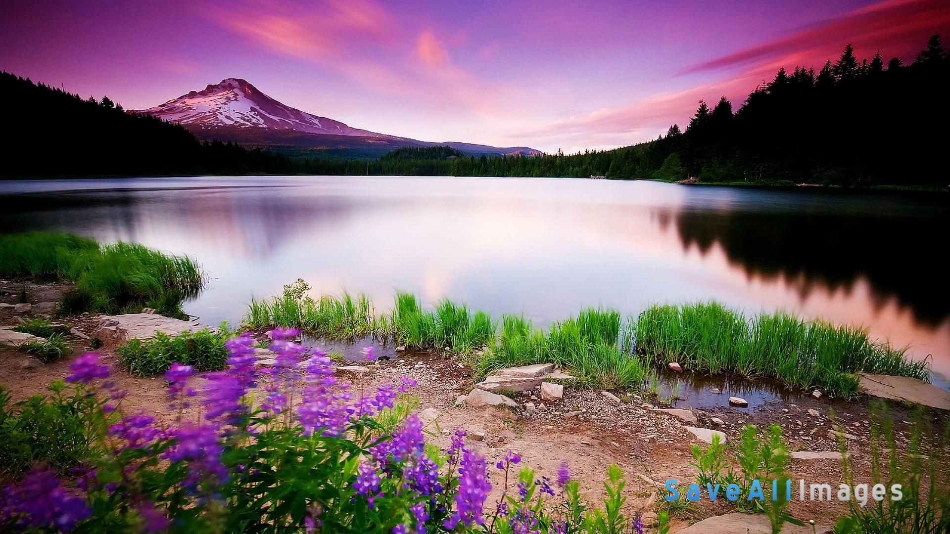 45 hd beautiful wallpapers backgrounds for free download