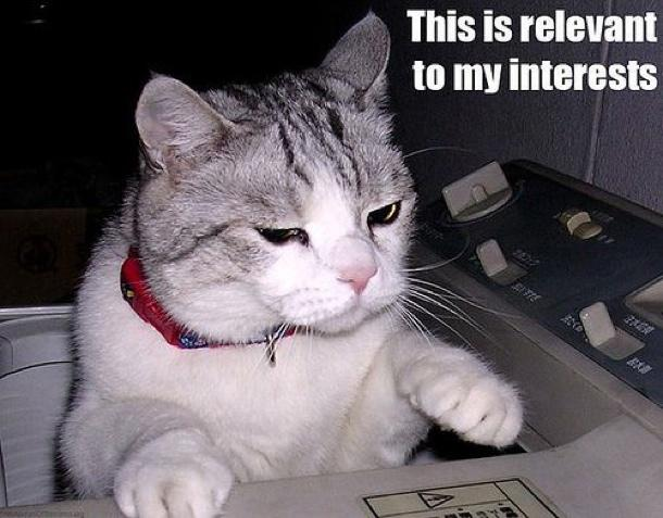lolcat_interests