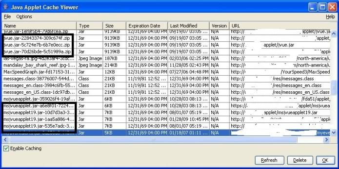 Java Applet Cache viewer