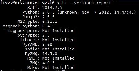 SaltStack Windows Patching Example