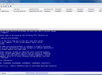 02-BlueScreenView