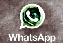 WhatsApp spia privacy
