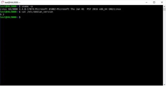 Kali Linux sbarca su Windows App Store