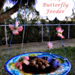 Make an eye-catching DIY Butterfly Feeder (Special Nectar Recipe)