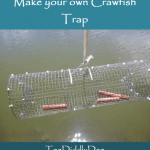 Make your own DIY crawfish trap!