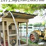 DIY Attractive Easy-Drain Duck Pond