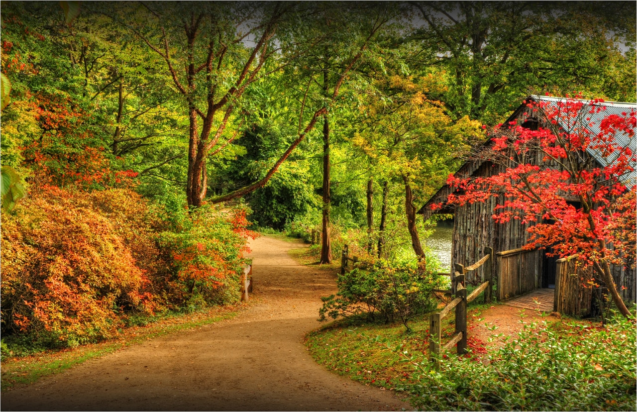 Fall Widescreen Wallpaper Autumn In London 10 Of The Best Walks