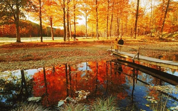 Late Fall Photos For Wallpaper New England In The Fall Expert Holiday Planner Where To