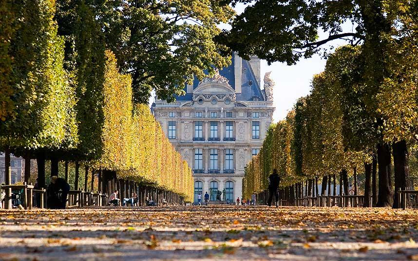 Fall Leaf Wallpaper For Mobile Paris Attractions What To See And Do In Autumn Telegraph