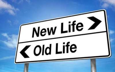 New Year, new job: how to change career and future-proof ...