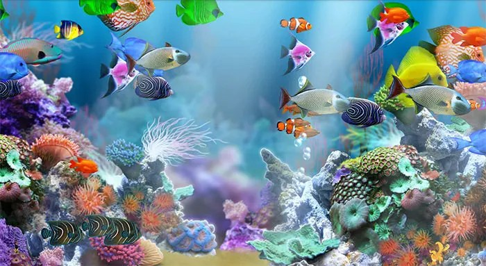 printable fish tank backgrounds