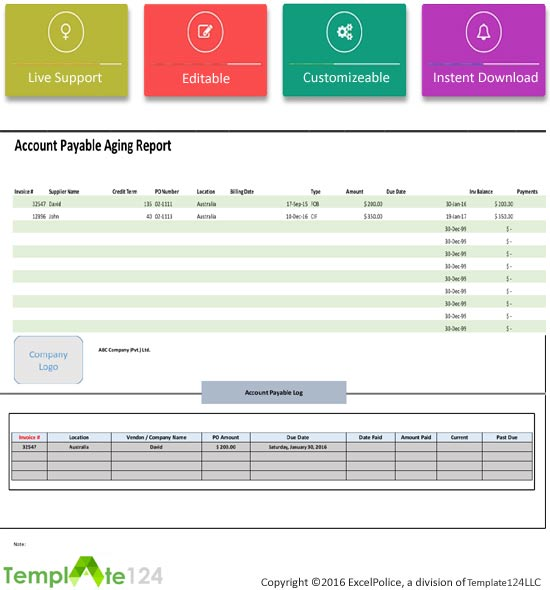 Account Payable Aging Report Template Template124