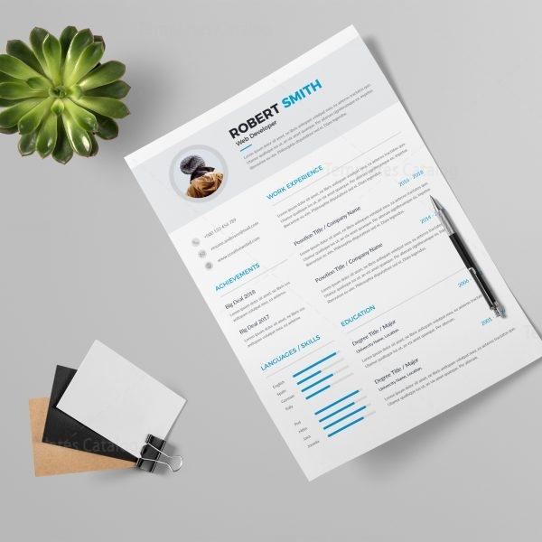 professional resume design templates - Maggilocustdesign - professional resume design templates