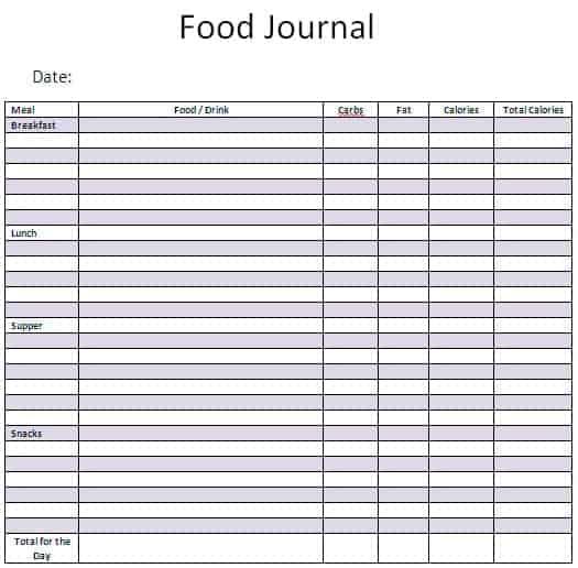 sample food journal template - Ozilalmanoof
