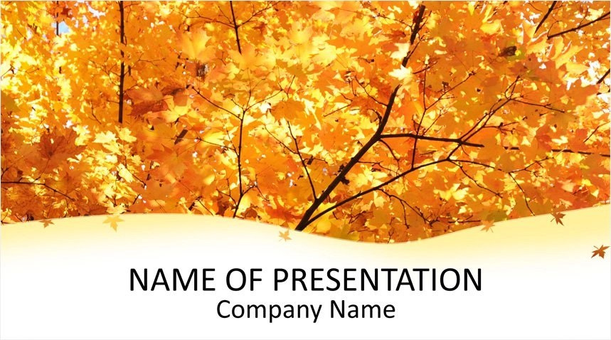 Maple Leaves PowerPoint Template - Templateswise