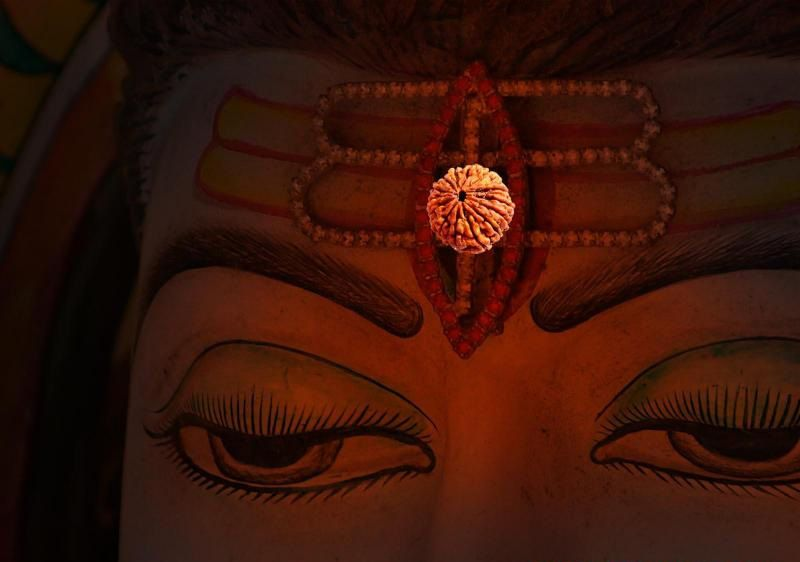 Shiv Animated Wallpaper Rudraksha Rudraksh Original 1 To 21 Mukhi Rudraksh