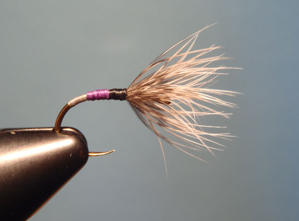Grey, Purple & Black Sakasa Kebari with Natural Brahma Hen Hackle