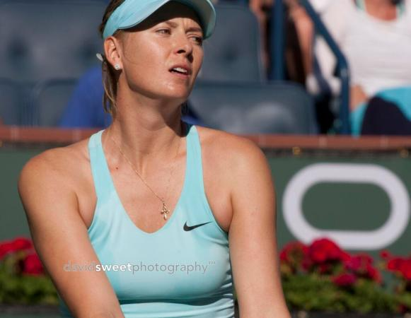 Sharapova gets ready to serve