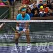 Rafael Nadal to Play Brisbane