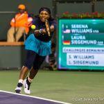 Serena stretch bh 3112016