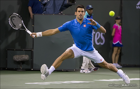 Djokovic IW 15 TR MALT1656