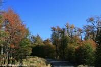 Road to Aguas Blancas