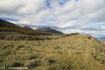 Beautiful rolling hills of steppe vegetation