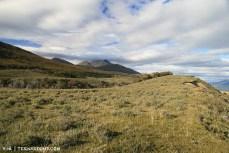 Beautiful rolling hills of steppe vegetation