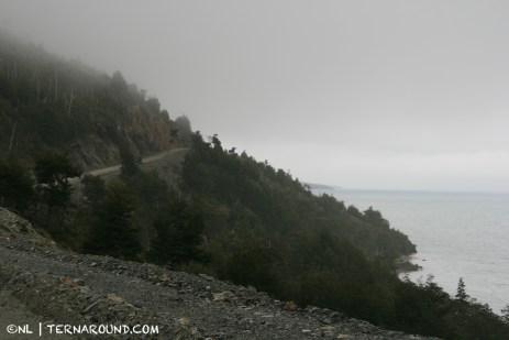 Road alongside Lago Fagnano