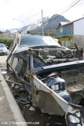 TdF - Ushuaia - road kill 1