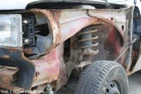 TdF - Ushuaia - road kill 13