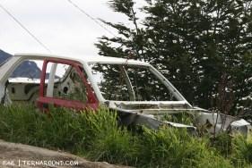 TdF - Ushuaia - road kill 14