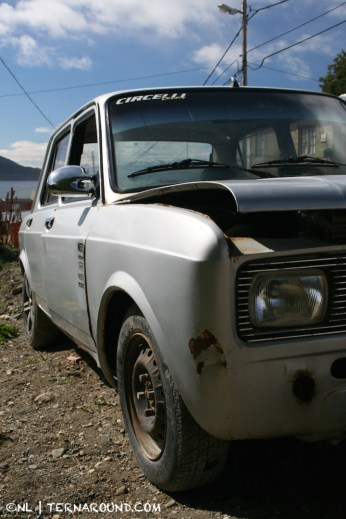 TdF - Ushuaia - road kill 7