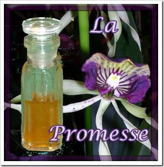 la promesse 2
