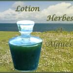 LE VERT (2) Lotion visage Herbes et algues