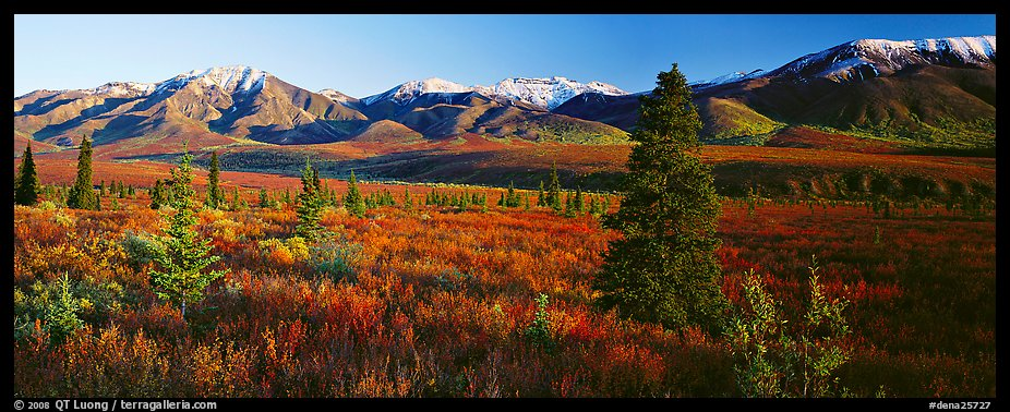 Fall Mountain Scenery Wallpaper Panoramic Picture Photo Tundra Scenery With Trees And