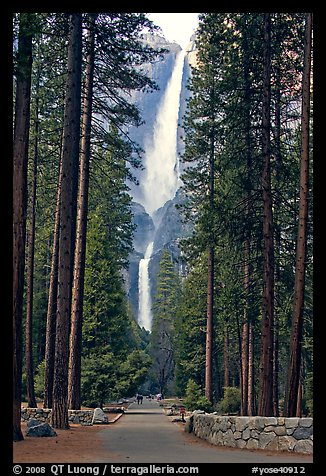 Yosemite Falls Wallpaper Picture Photo Path Leading To Yosemite Falls Framed By