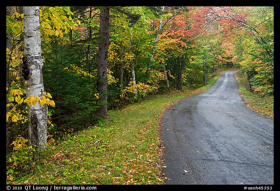 New Hampshire Fall Foliage Wallpaper Picture Photo Rural Road In Autumn White Mountain