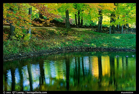 New England Fall Foliage Desktop Wallpaper Picture Photo Pond With Tree Reflections Vermont New