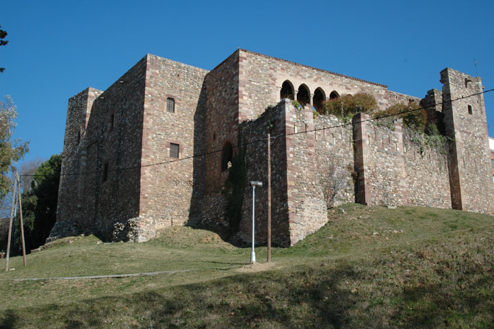 Castell Cartoixa de Vallparadís