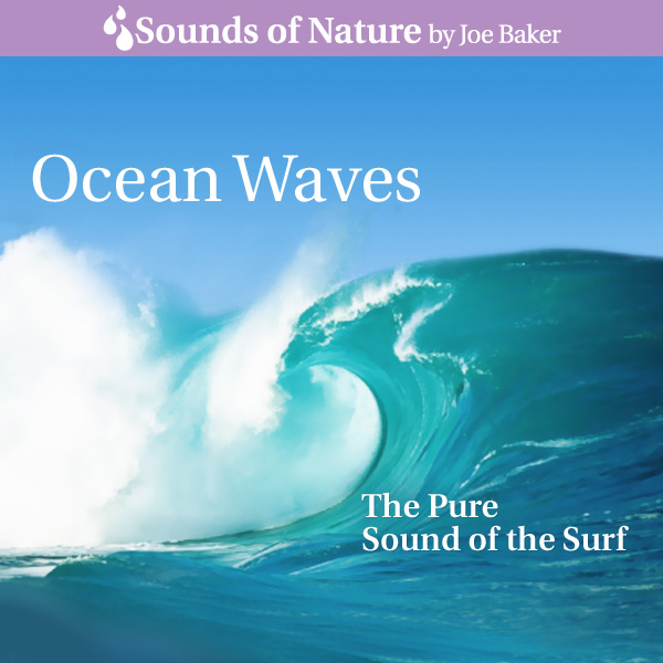Terrific Sound Nature Sounds Albums Ocean Waves by Joe Baker