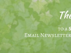 The 3 S's to a Successful Email Newsletter Program