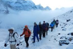 TIMS Cards Mandatory For Foreign Trekkers In Nepal - TexasNepal News
