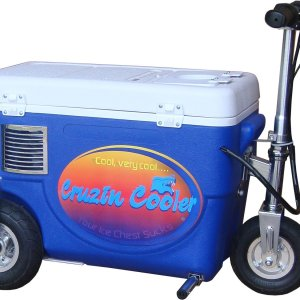Cruzin-Cooler-Electric-Scooter-Cooler-B01E4DZ94U
