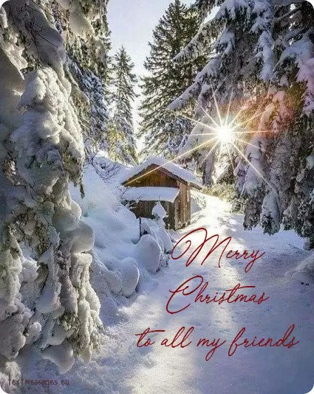 Top 50 Merry Christmas Wishes For Friends