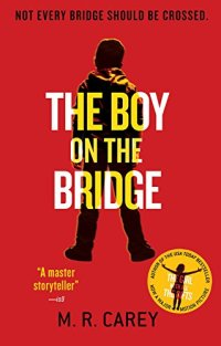 The Boy On The Bridge review