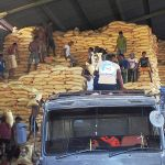 Cabinet of Thailand allocates Bt20 billion for rice payments to farmers