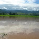 Floods damage 500,000 rai of sugarcane crop in Thailand